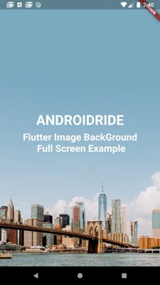Flutter Image Container full screen example